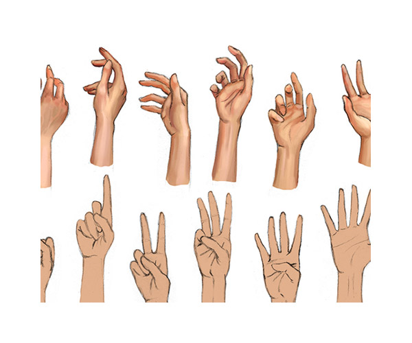 sketches-hand-poses-thumb